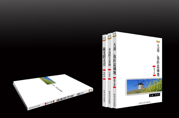 书籍封面装帧设计_600元