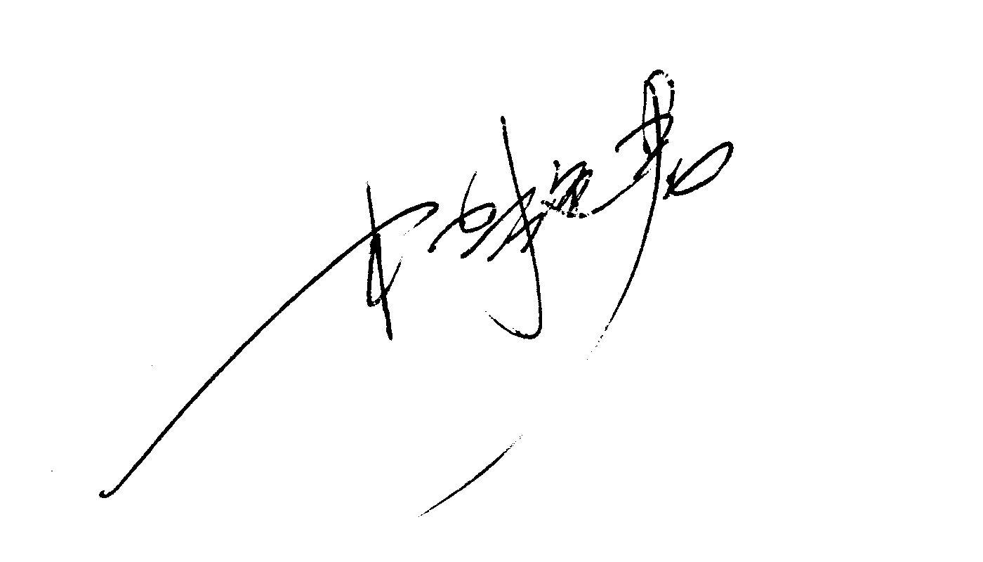 飞凡签名设计作品集图片